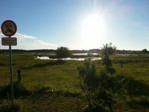 Engen i Ølstykke