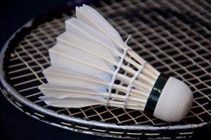LSI - Ledøje-Smørum Badminton