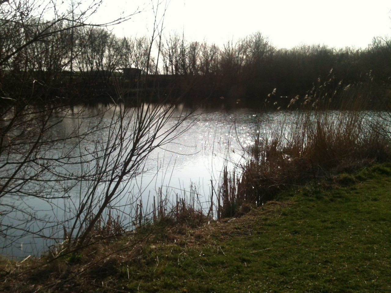En lille lokal sø til nybegynder-fiskeri