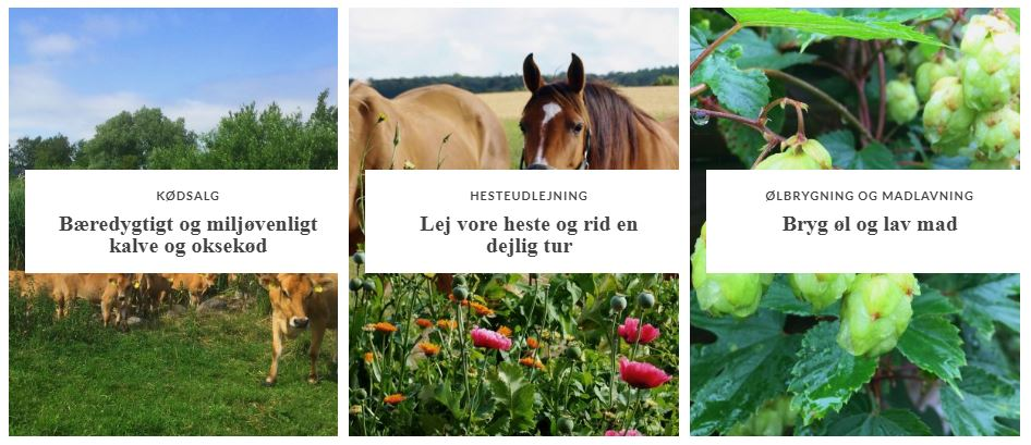 Nygård – hesteudlejning, øl og madlavning, kødsalg