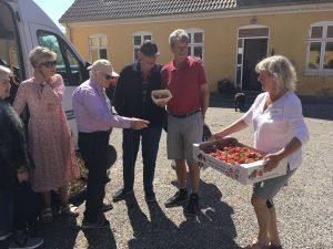 Nyopgravede kartofler fra Møllehøj til Egedals plejecentre på Valdemars Dag
