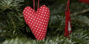 Mødrehjælpen og Egedal Rotary Klub <br>går sammen om julegavehjælp til udsatte familier