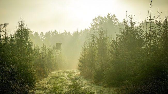 Tag jagttegn i Stenløse-Veksø Jagtforening