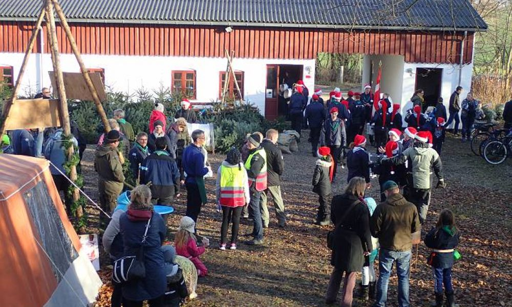 En anderledes jul hos Stenlænderne 2020 – Online Juletræssalg og udendørs julemarked