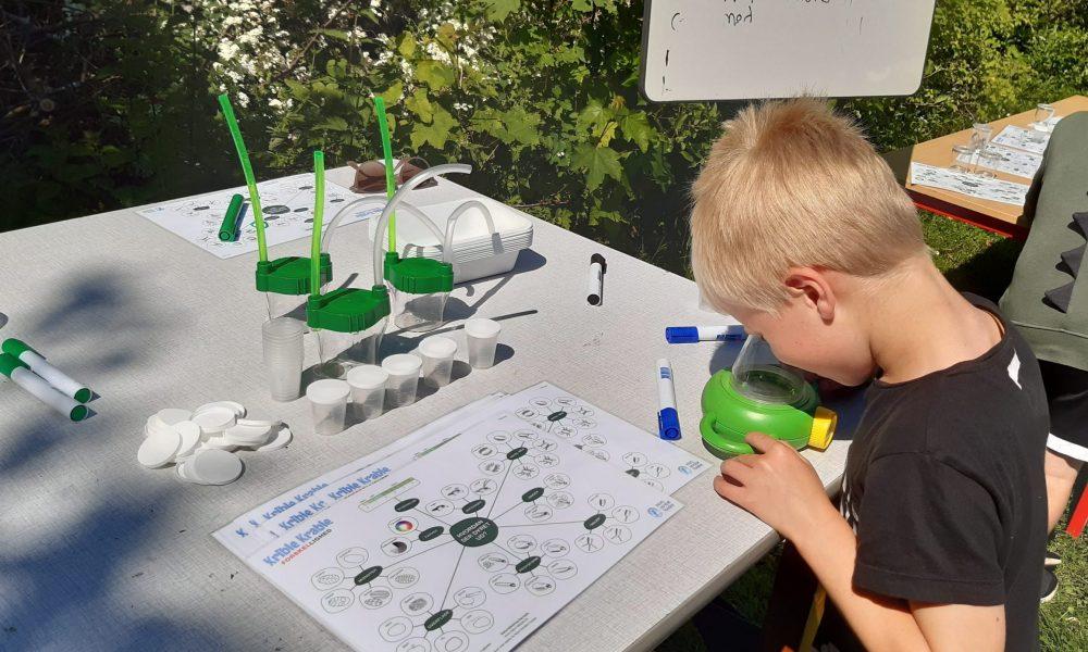 Biodiversitet i børnehøjde: Små forskere fra Balsmoseskolen i felten for insekterne
